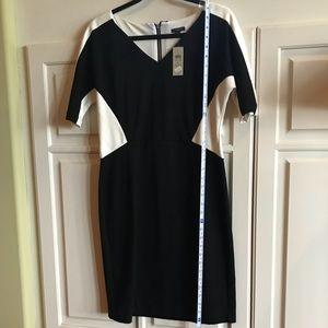 Ann Taylor knit dress size 4 NWT cream and black